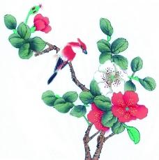 花鸟国画0061