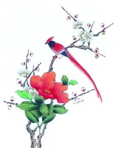 花鸟国画0059