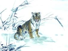 中国动物画0033