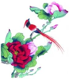 花鸟国画0066