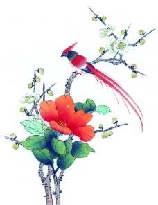 花鸟国画0058