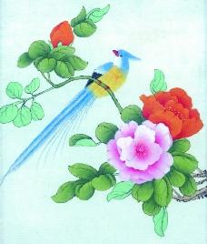 花鸟国画0072