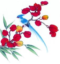 花鸟国画0067