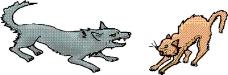 动物漫画0515
