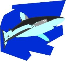 海洋动物0120