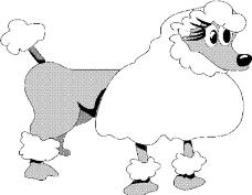 动物漫画0113