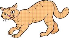 动物漫画1117