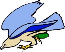 鳥的天堂0548