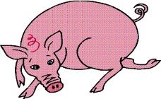 动物漫画0051