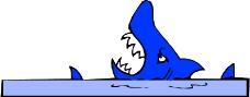 水中动物0379