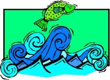 水中动物0467