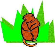 动物漫画1858