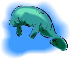 海洋动物0644