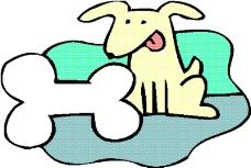动物漫画2828