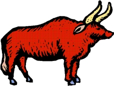 动物漫画1176