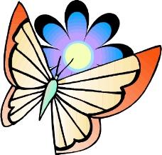 昆虫蝴蝶0868