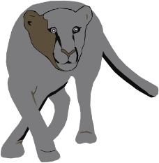 珍稀动物0220