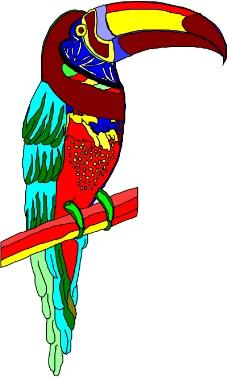 鸟的天堂0271