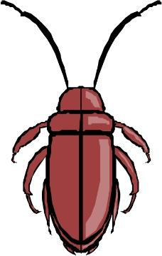 昆虫蝴蝶0227