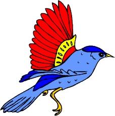 鸟的天堂0140