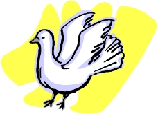 鸟类动物0179