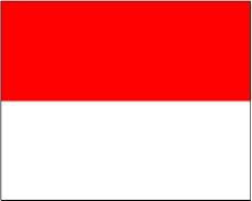 各种旗帜0077