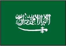 各种旗帜0485