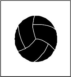 球类0431