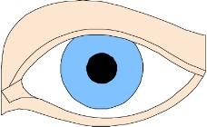 眼睛0021