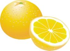水果大全0060