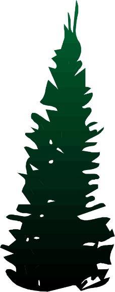 树木0676