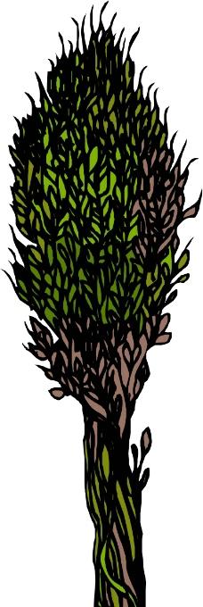樹木0075