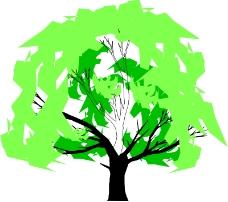 树木0616