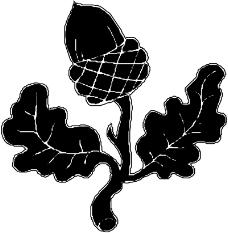 树木1042