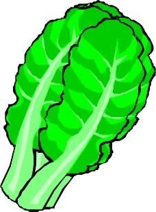 蔬菜水果0563