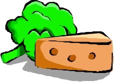 生野菜0460
