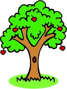 树木0569