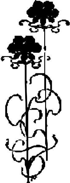 花草1171
