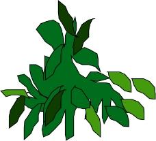 树木0398