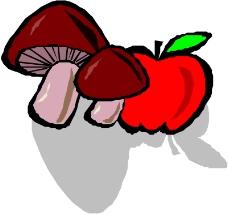 蔬菜水果0227