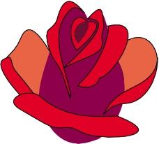 鲜花0478