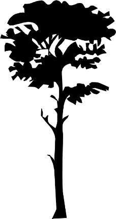 古典花纹边框矢量图