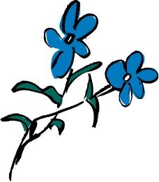 鲜花1283