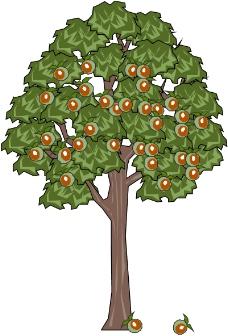 树木0479