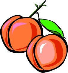 蔬菜水果0211