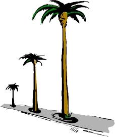 树木0586