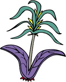 鲜花1325
