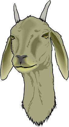 珍稀动物0692