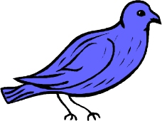 鸟的天堂0546