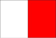 各种旗帜0007